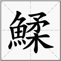 《鰇》-康熙字典在线查询结果 康熙字典