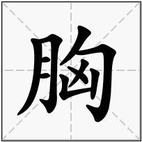 《胸》-康熙字典在线查询结果 康熙字典