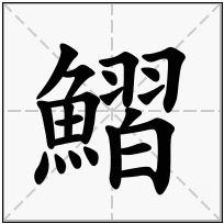 《鰼》-康熙字典在线查询结果 康熙字典