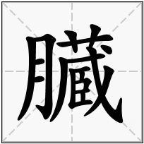 《臓》-康熙字典在线查询结果 康熙字典