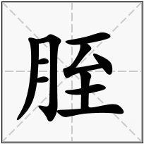 《胵》-康熙字典在线查询结果 康熙字典