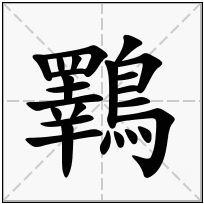 《鸅》-康熙字典在线查询结果 康熙字典
