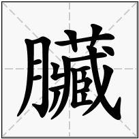《臟》-康熙字典在线查询结果 康熙字典