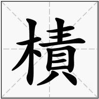 《樍》-康熙字典在线查询结果 康熙字典