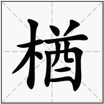 《楢》-康熙字典在线查询结果 康熙字典