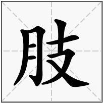 《肢》-康熙字典在线查询结果 康熙字典