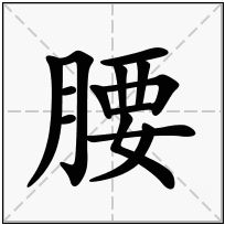 《腰》-康熙字典在线查询结果 康熙字典